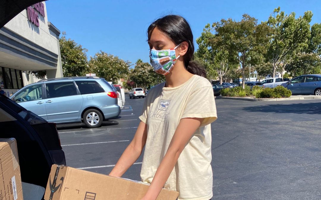 Cupertino Chapter COVID-19 Household Pickup #151 (Clothes, Books, Toys)